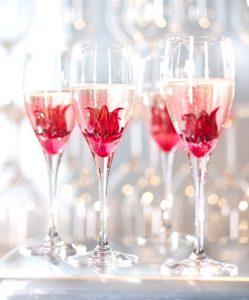 hibiszkusz pohár különlegességek
